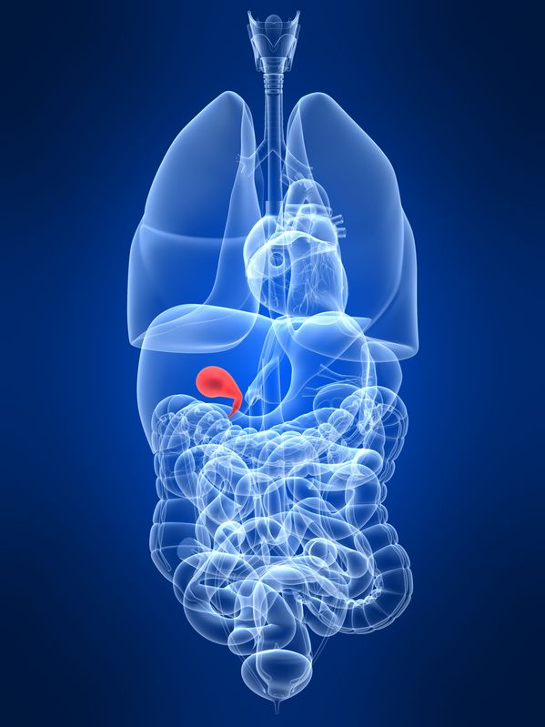 Considering Gallbladder Health in the Treatment of Constipation